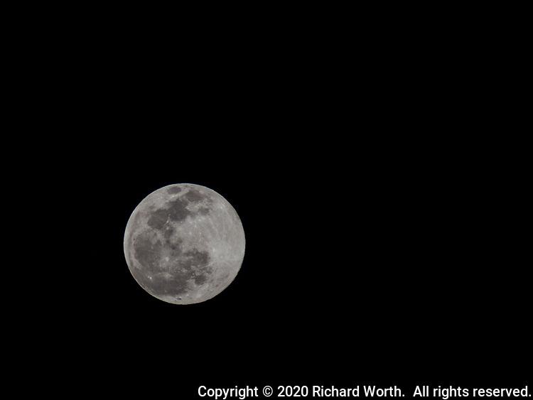 The Full Snow Moon, February 2020 from a backyard near San Francisco Bay.