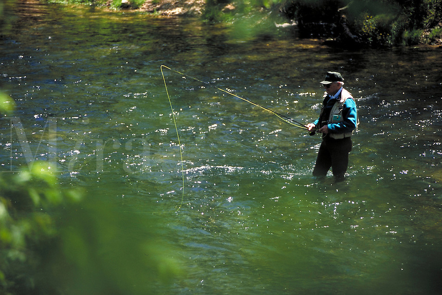 Fisherman flyfishing for trout in stream. Missouri, Ozark region.
