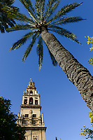 SPAIN, Cordoba, Mezquita, mosque and cathedral, bell tower