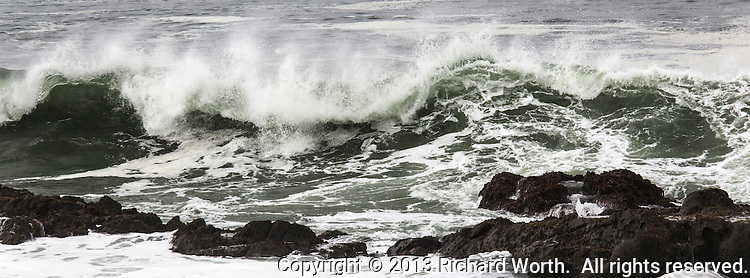 A curling wave heads toward the rocks at Bean Hollow State Beach.  Cropped to panoramic perspective.