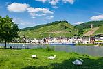 Deutschland, Rheinland-Pfalz, Moseltal, Zell an der Mosel mit dem Pulverturm |Germany, Rhineland-Palatinate, Moselle Valley, Zell at river Moselle with landmark Powder Tower