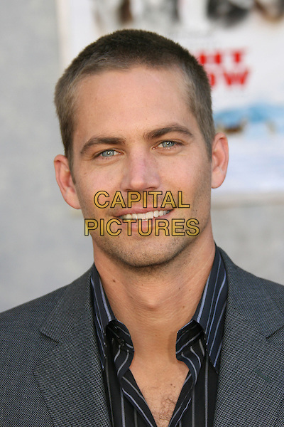 """30 November 2013 - Santa Clarita, California - Paul Walker died at the age of 40 in a car accident while attending a charity event for his organization Reach Out Worldwide. The accident occurred in Santa Clarita when Walker's Porsche lost control and crashed into a tree. The car burst into flames and exploded. File Photo: 12 February 2006 - Hollywood, California - Paul Walker.  Walt Disney Pictures' """"Eight Below"""" Premiere held at El Capitan Theatre. <br /> CAP/ADM/ZL<br /> ©Zach LippAdMedia/Capital Pictures"""