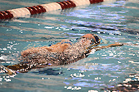 09 Women's NCAA Swimming & Diving Championships MI Saturday Early