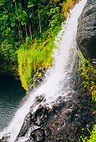Kulaniapia Falls, Hilo, Big Island of Hawai'i.