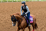 DEL MAR, CA - NOVEMBER 01: Whitmore, owned by Southern Springs Stables, Robert V. La Penta &  Head of Plains Partners LLC and trained by Ron Moquett, exercises in preparation for TwinSpires Breeders' Cup Sprint at Del Mar Thoroughbred Club on November 1, 2017 in Del Mar, California. (Photo by Sue Kawczynski/Eclipse Sportswire/Breeders Cup)