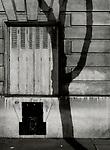 Paris, Tree Shadow, Baumschatten, Baum, 28.11.2013<br /> <br /> <br /> <br /> <br /> ***HIGHRES AUF ANFRAGE*** ***VOE NUR NACH RUECKSPRACHE***<br />  ***Keine Social_Media Nutzung***<br /> <br /> Engl.: Europe, France, Paris, Tree Shadow, shadows, trees, tree, window, house wall, facade, 28 November 2013<br /> ***HIGHRES ON REQUEST***PUBLICATION ONLY AFTER CONSULTATION WITH LAIF***<br /> ***No social media use***