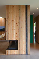 The free-standing contemporary fireplace in the living area is clad in pine