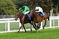 Winner of The Radcliffe & Co Novice Median Auction Stakes (Div 1) Tornadic (rails) ridden by Charles bishop and trained by Eve Johnson Haughton during Horse Racing at Salisbury Racecourse on 11th September 2020