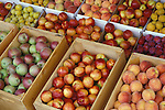 nectarines, plums, apples & peaches at Agostinho's Fruit Stand; Osoyoos, Okanagan Valley, British Columbia.  .#9017-1513