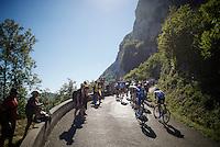 grupetto up the Lacets du Grand Colombier (Cat1/891m/8.4km/7.6%)<br /> <br /> stage 15: Bourg-en-Bresse to Culoz (160km)<br /> 103rd Tour de France 2016