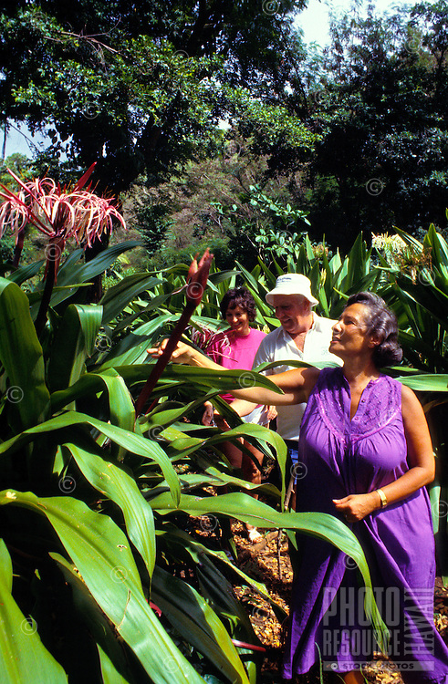 Group of people admiring the beauty of nature walking through the tropical botanical gardens of Kauai