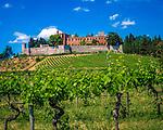 Italien, Toskana, Chianti: Weingut Castello di Brolio | Italy, Tuscany, Chianti: wine-growing estate Castello di Brolio