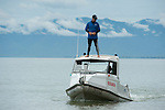 Dr. Jamie Seymour searching for box jeelyfish near the beach shore from atop a research vessel