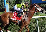 Red Rifle wins the Bowling Green Handicap on August 1, 2015 at Saratoga Race Course in Saratoga Springs (Sophie Shore/Eclipse Sportswire)