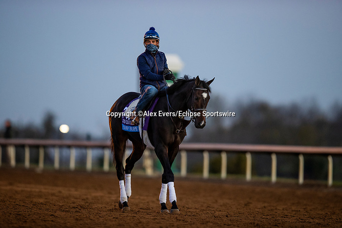November 4, 2020: Camp Hope, trained by trainer Kenneth G. McPeek, exercises in preparation for the Breeders' Cup Juvenile at  Keeneland Racetrack in Lexington, Kentucky on November 4, 2020. Alex Evers/Eclipse Sportswire/Breeders Cup