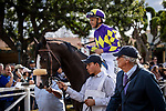 MAR 07:Honor AP and Mike Smith before the San Felipe Stakes at Santa Anita Park in Arcadia, California on March 7, 2020. Evers/Eclipse Sportswire/CSM
