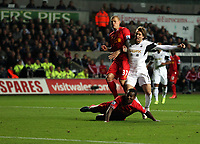 Pictured: Michu of Swansea (R), against Martin Skrtel (L) and Kolo Toure (FRONT) both of Liverpool, scoring his equaliser, making the score 2-2. Monday 16 September 2013<br /> Re: Barclay's Premier League, Swansea City FC v Liverpool at the Liberty Stadium, south Wales.