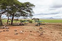 Tanzania. Tarangire National Park.  Silale Swamp Picnic Site.