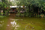 Research station in flooded rainforest after rain, Tortuguero National Park, Costa Rica
