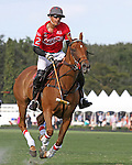 WELLINGTON, FL - FEBRUARY 12:  Wes Finlayson #2 of Coca Cola watches to see if the ball goes through the goal posts,  in the Ylvisaker Cup during Sunday's Feature Match vs Valiente II at the International Polo Club, Palm Beach on February 12, 2017 in Wellington, Florida. (Photo by Liz Lamont/Eclipse Sportswire/Getty Images)