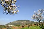 Israel, Mount Tabor overlooking Jezreel valley