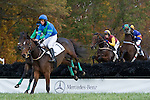 07 November2010:  Sgt. Bart and James Slater, Tizsilk and Paddy Young (1st), Dynacast and Roddy McKenzie in the Constitution Hurdle at Montpelier Hunt Races in Montpelier Station, Va. Tizsilk is owned by Roger O'Byrne and trained by Tom Voss.    Susan M. Carter/Eclipse Sportswire