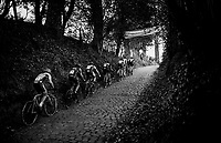 up the Koppenberg<br /> <br /> Elite Men's race<br /> Koppenbergcross / Belgium 2017