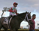 HALLANDALE BEACH, FL - JANUARY 14:  #2 Tommy Macho (KY) with jockey Luis Saez in the winners' circle after winning the 31st running of the Hal's Hope G3 Stakes at Gulfstream Park on January 14, 2017 in Hallandale Beach, Florida. (Photo by Liz Lamont/Eclipse Sportswire/Getty Images)