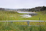 Pond at MacKerricher State Park on the California Coast,  north of Fort Bragg, California at Williams Point.  This stunning coastline is often skipped by coastal drivers preferring the straight route along U.S. 101.  Pond level regulatd by flood gate in lower right.