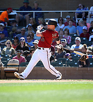 Kole Calhoun - Arizona Diamondbacks 2020 spring training (Bill Mitchell)