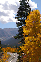 Fall Colors in mountains of Colorado and along Peak to Peak Highway.