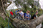 SBSJ Group On Canopy Tower, Tiputini