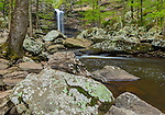 Petit Jean State Park, Arkansas: Cedar Creek Falls in spring hardwood forest