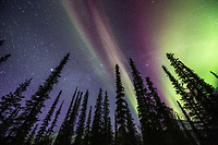 Brooks Range mountains, Arctic, Alaska