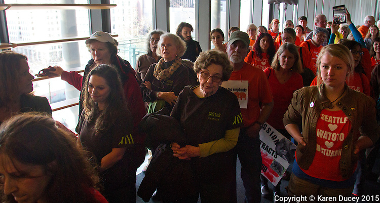 Supporters of the Woodland Park Zoo's elephant program, wearing brown, wait in line alongside advocates, wearing orange, who hope the elephnats retire to a sanctuary prior to a Seattle city council meeting on March 9, 2015. A 20 minute pubic comment period was allowed duing today's meeting where people from both sides expressed their views. (photo © Karen Ducey Photography)