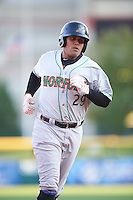 Norfolk Tides catcher Francisco Pena (29) runs the bases after hitting a home run during a game against the Buffalo Bisons on July 18, 2016 at Coca-Cola Field in Buffalo, New York.  Norfolk defeated Buffalo 11-8.  (Mike Janes/Four Seam Images)