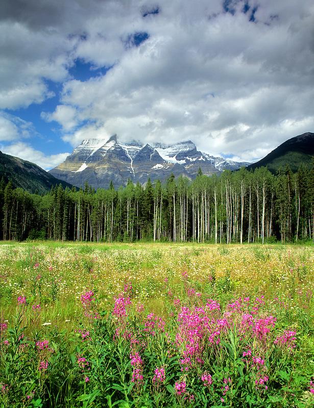 Mount Robson, Canadian Rockies.