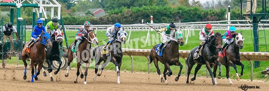 winning at Delaware Park on 10/7/21