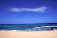 Monk seal on pristine beach, Niihau