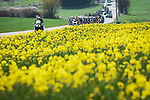 The peloton during the 2021 Flèche-Wallonne, running 193.6km from Charleroi to Huy, Belgium. 21st April 2021.  <br /> Picture: A.S.O./Aurélien Vialatte | Cyclefile<br /> <br /> All photos usage must carry mandatory copyright credit (© Cyclefile | A.S.O./Aurélien Vialatte)