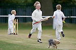 Pix: Shaun Flannery/shaunflanneryphotography.com...COPYRIGHT PICTURE>>SHAUN FLANNERY>01302-570814>>07778315553>>..29th May 2011...............Cricket, Sprotbrough v Bentley Under 9's.First round of the Doncaster Junior Cricket League Cup..Mason Flannery notches up a run despite the intervention of a small dog.