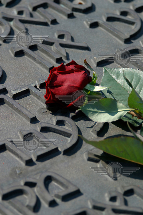 Flowers left by visitors to the Auschwitz Nazi concentration camp. It is estimated that between 1.1 and 1.5 million Jews, Poles, gypsies and others were killed here in the Holocaust between 1940-1945.