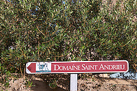 Domaine St Andrieu Montpeyroux. Languedoc. France. Europe.