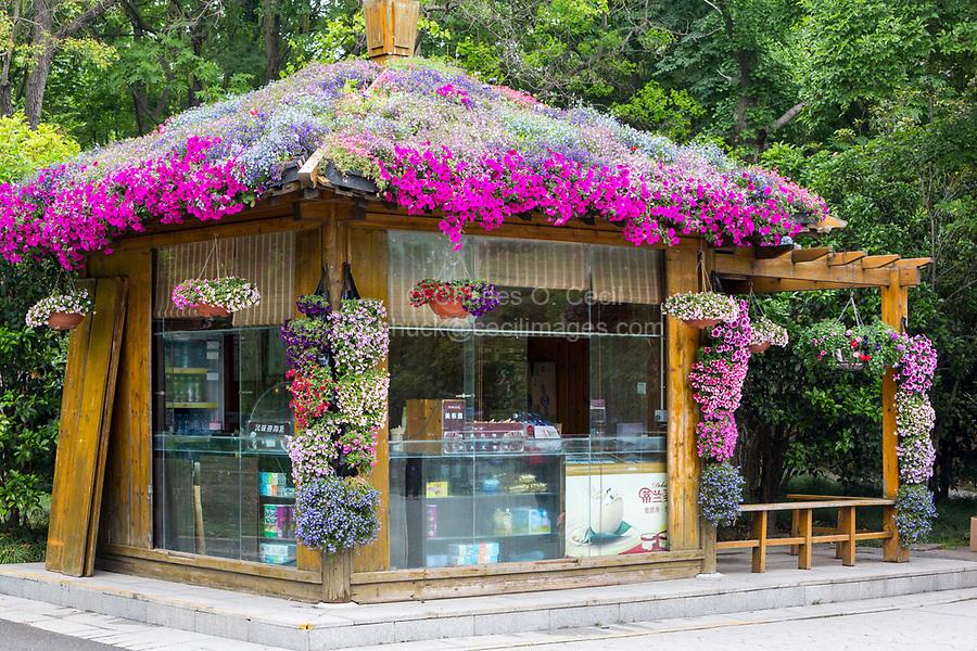 Yangzhou, Jiangsu, China.  Refreshment Stand Covered with Flowers, Slender West Lake Park.