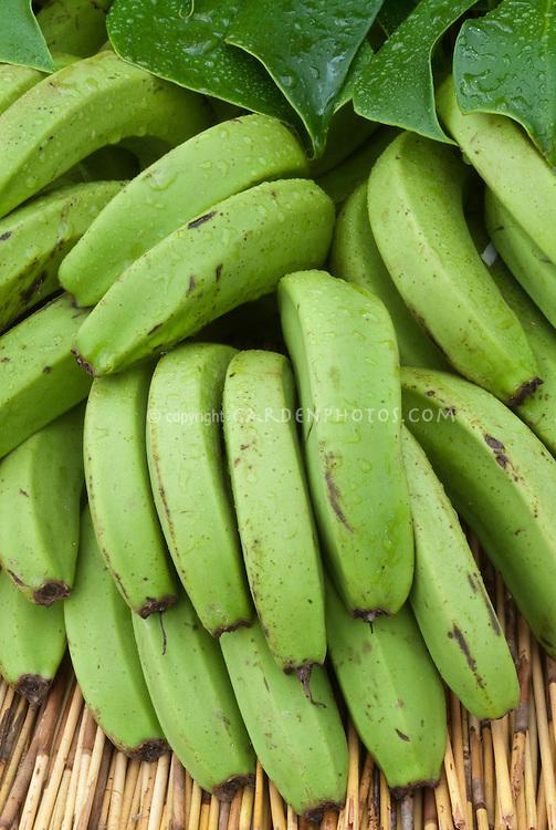 Bananas green
