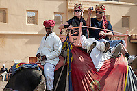 Amber (or Amer) Palace, near Jaipur, Rajasthan, India.  Elephants take visitors up the steep path to the palace.