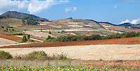 Myanmar, Burma.  Shan State Scenic View.  Cultivated Fields on Hillsides.