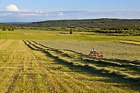 Farmer bales hay on a sunny summer evening along Chena Hot Springs road, interior, Fairbanks, Alaska.