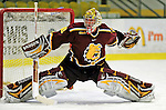 2009-01-03 NCAA: Ferris State vs Colgate Men's Hockey