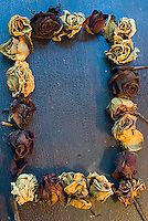 Dried roses layed out as a border on dark wood background<br />